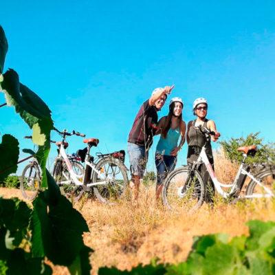 en bici entre viñedos montesquius